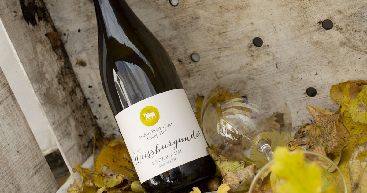 Weissburgunder Pinot Bianco Mediaevum Gump