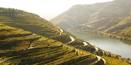 rio douro vinhos de mesaì